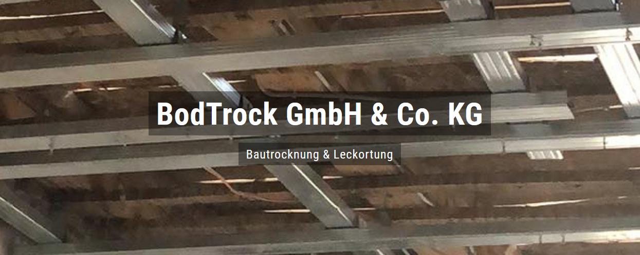 Bautrocknung für Meckenheim (Pfalz) - Bodtrock: Wasserschaden, Trocknungsgeräte, Schimmelsanierung, Leckortung