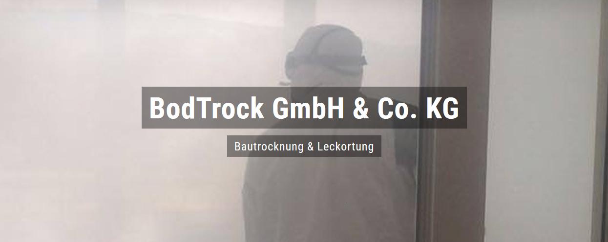 Bautrocknung in Böhl-Iggelheim - Bodtrock: Wasserschaden, Trocknungsgeräte, Schimmelsanierung, Leckortung