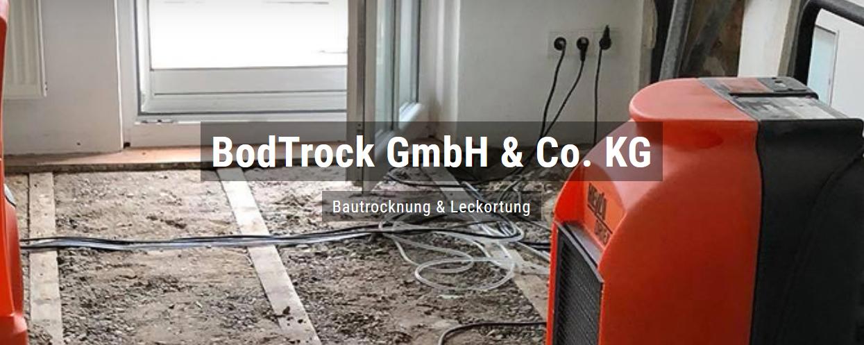 Bautrocknung in Brühl - Bodtrock: Wasserschaden, Trocknungsgeräte, Schimmelsanierung, Leckortung